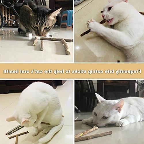 MR-BABULA Cat Catnip Toys, 100% Vine/Matatabi Dental