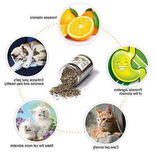 MR-BABULA Cat Sticks Toys, 100% Vine/Matatabi Dental Chew Cat, + 4PCS