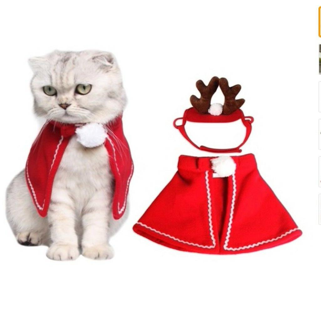 cat costumes cloaks mantle with buckhorn suit