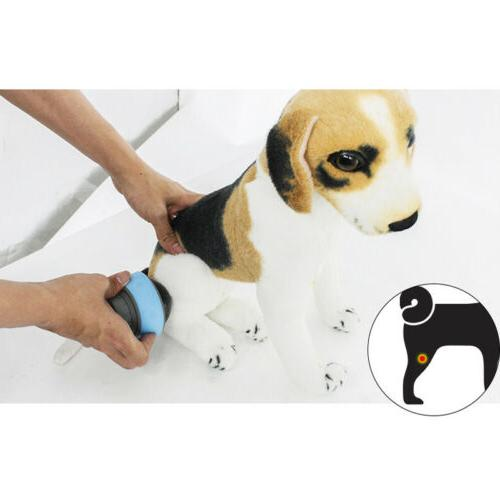 Pet muscle relaxation cat Dog
