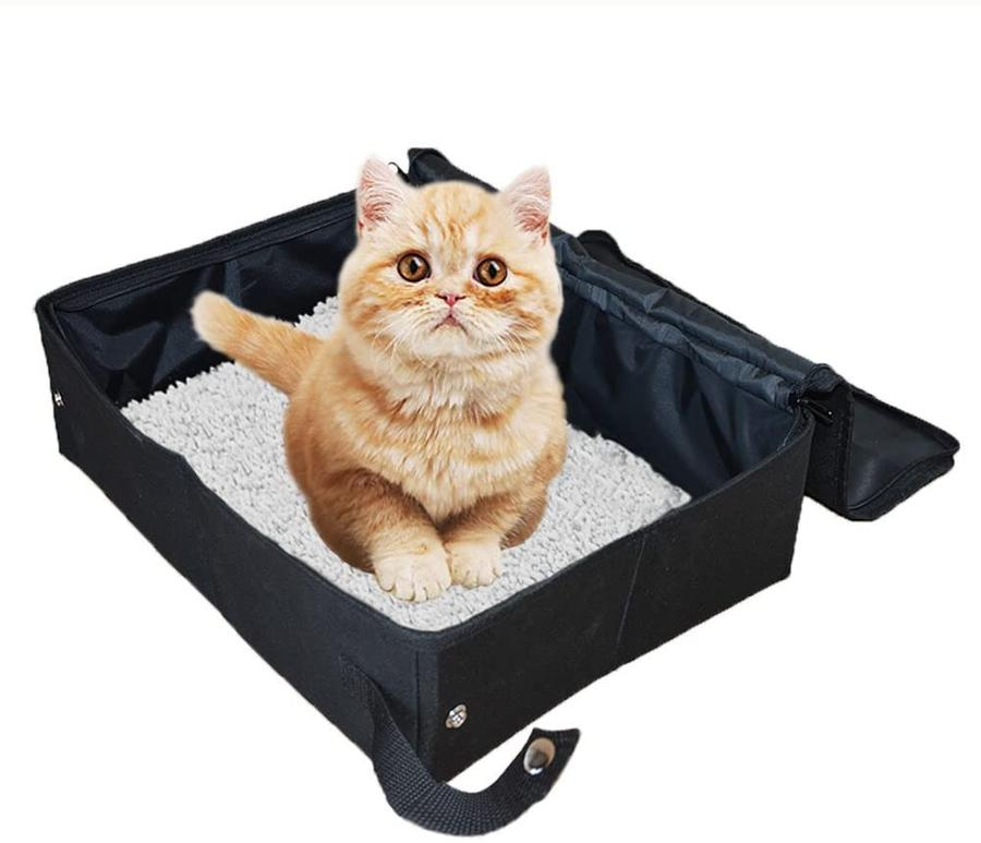 CAT BOX Foldable Collapsible for Travel