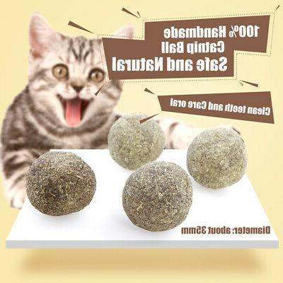 cat mint ball natural catnip tooth cleaning