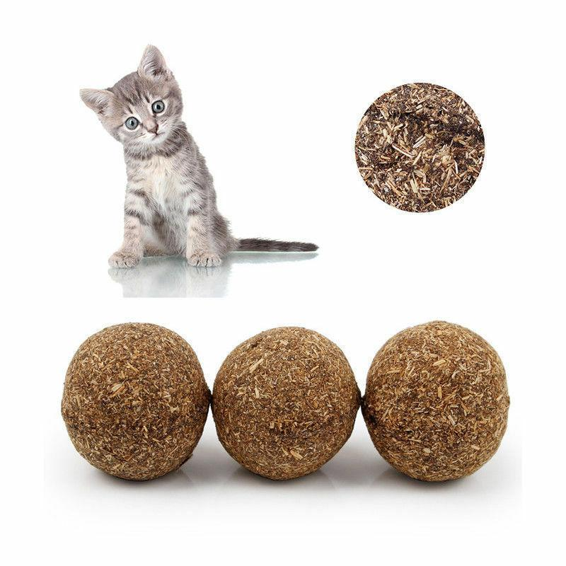 Cat Toys Kitten Treat Cats Playing Cleaning Teeth Toy