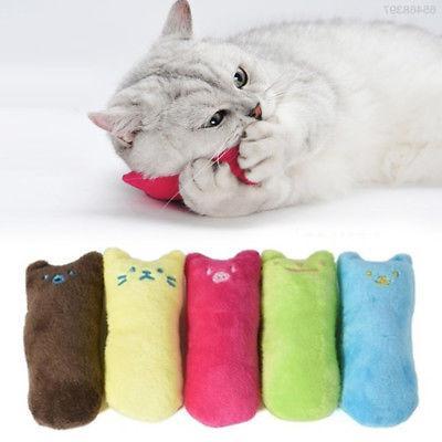 Cat Pet Accessories Grinding Outdoor Color