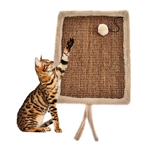 cat scratch board scratcher