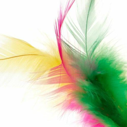 Cat Feather Toys Play Intelligent