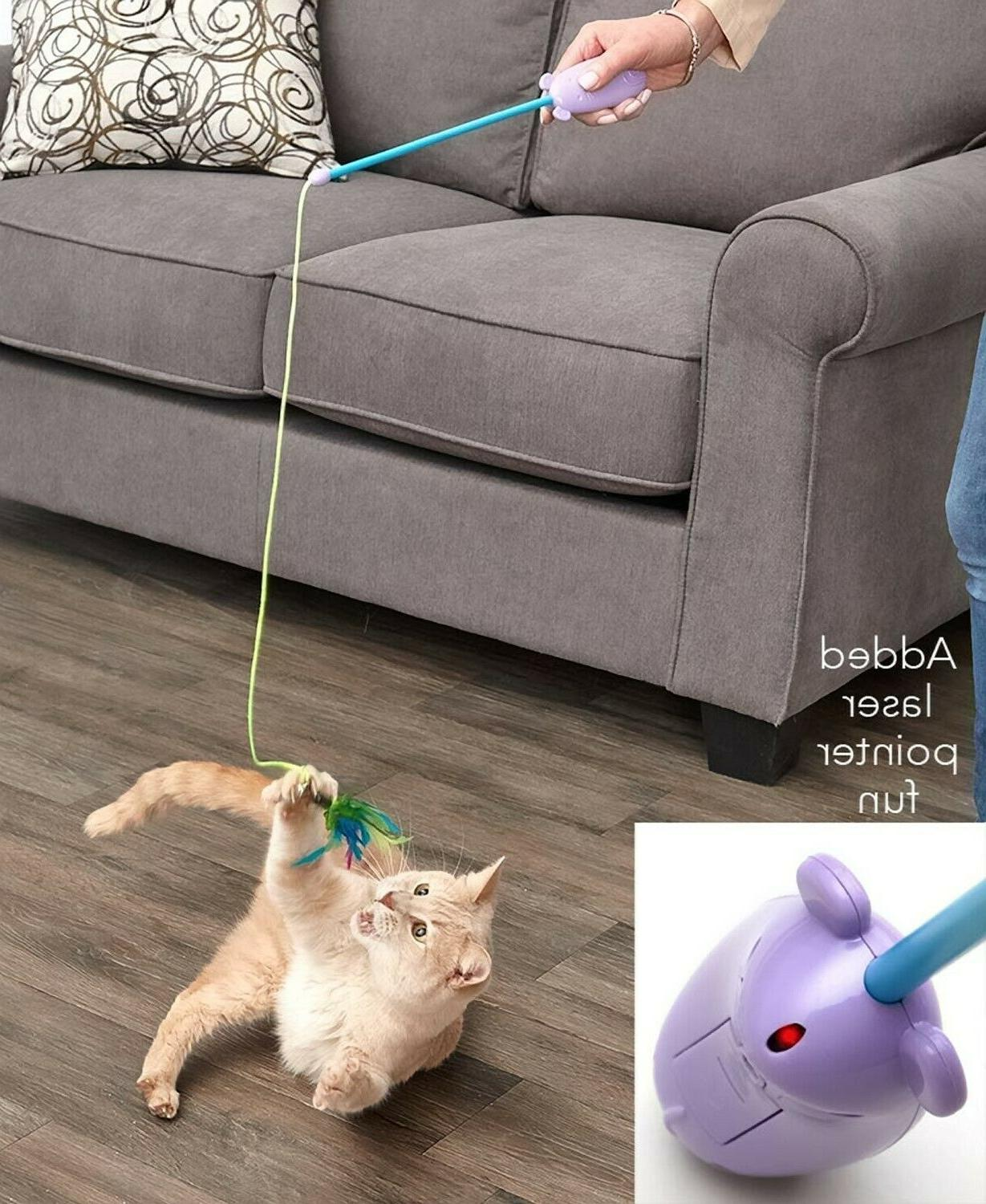 Cat Laser and