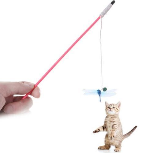 Cat Bell Pets Dogs Kitten Interactive
