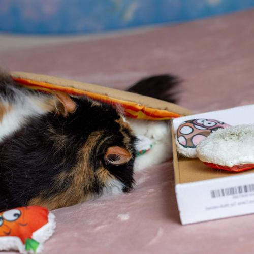 Cat Toys The Served in Pizza Box