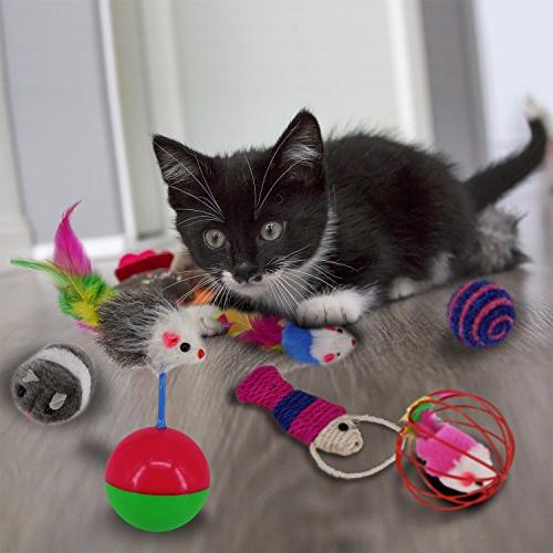 RIO Kitten - Feather Toy, Feather Teaser Wand, Fluffy Crinkle Balls and - Gift Set for Kitty