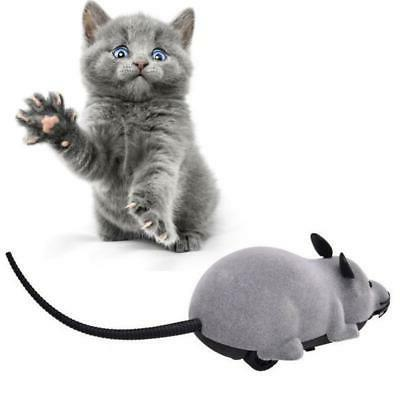 cat Mice Pets Mouse Wireless Remote Control Mouse