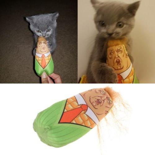 Cat Stuffed Corn Interactive Catnip
