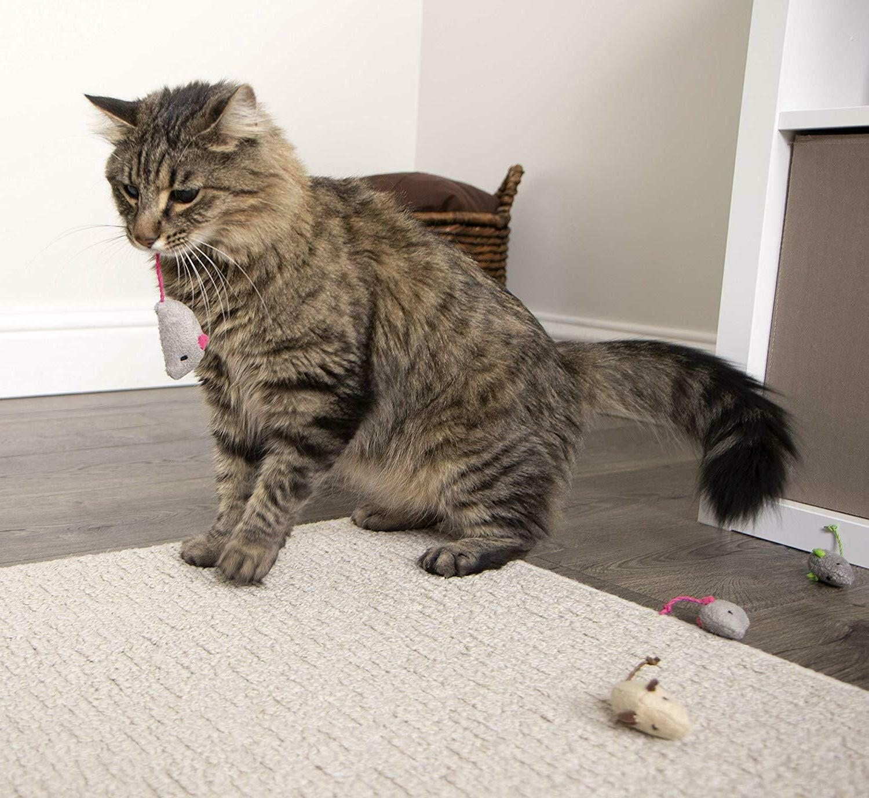 SmartyKat Catnip Cat | Toy Cats |