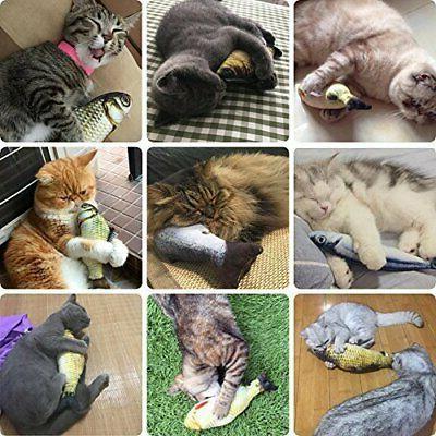 MAXXV Fish for Cats American Catnip