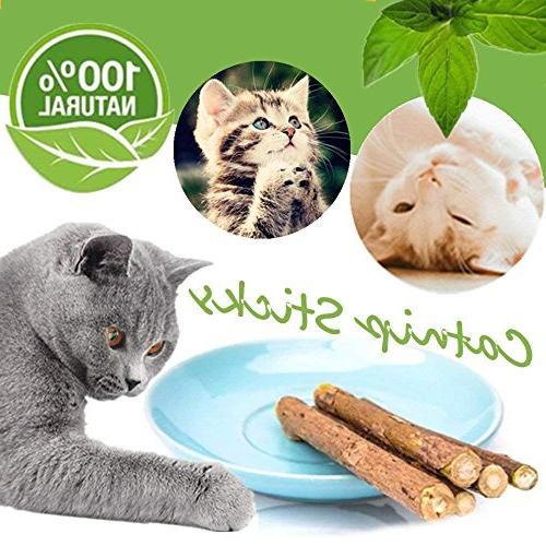 Catnip Sticks Organic Chew Toys Matatabi Chew Cat Teeth Chew Toy Cat Kitten