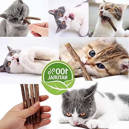 Catnip Organic Cat Chew Matatabi Silvervine Cat Teeth Toy Cat Kitty