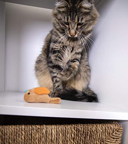 SmartyKat Chirp Cat Toy Bird