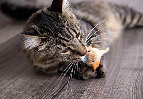 SmartyKat Chirp Cat Toy with Bird