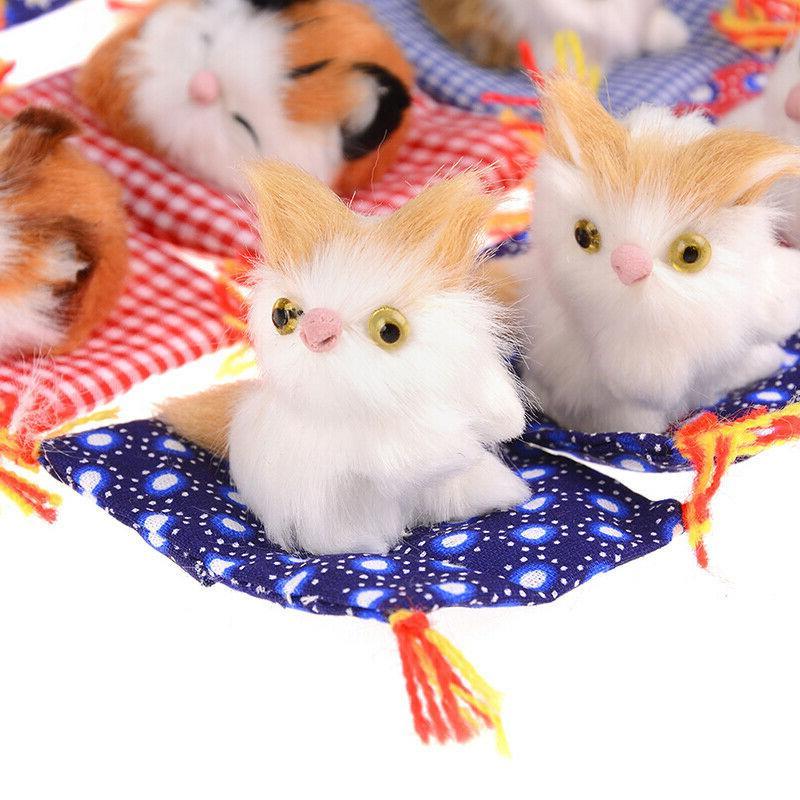 cat kids gift