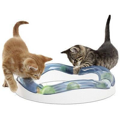 design senses speed circuit cat play toy