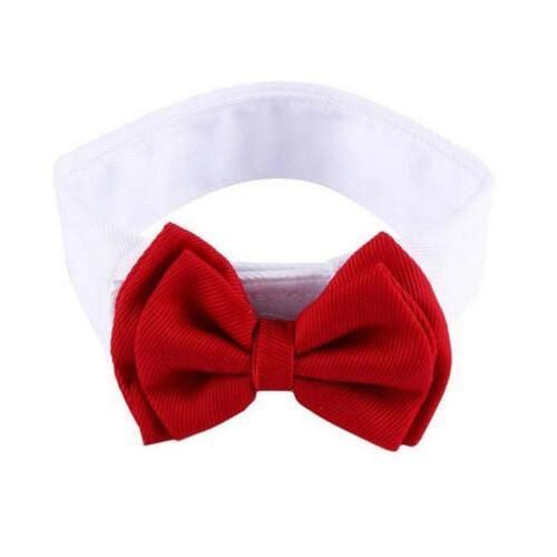 Dog Tie Puppy Necktie Clothes Kitten S-L