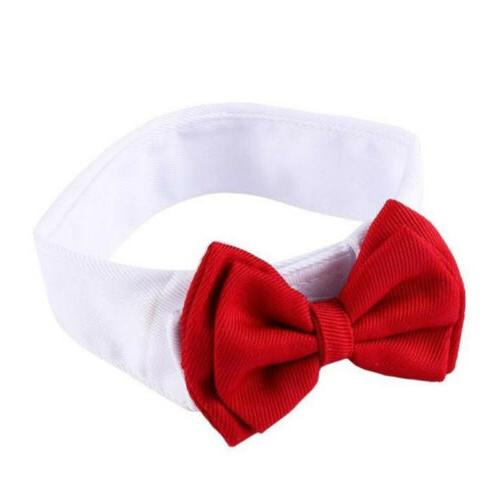 Dog Pet Puppy Necktie Clothes British Kitten S-L