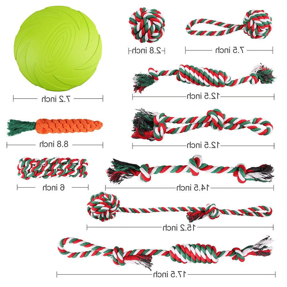 Dog Aggressive Chewers Puppy Pack