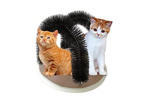 double arched cat groomer