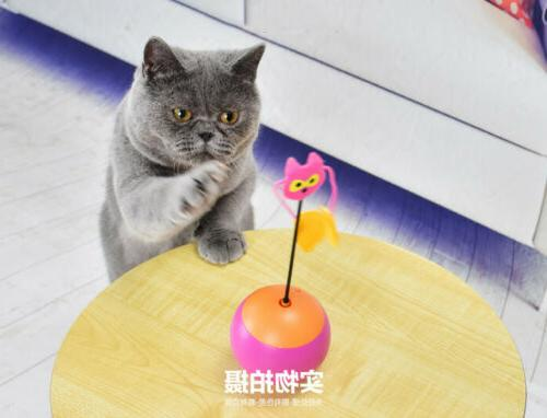 electric tumbler cat toys interactive chaser light