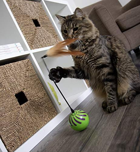 SmartyKat Whirl Motion Cat Toy, Seen