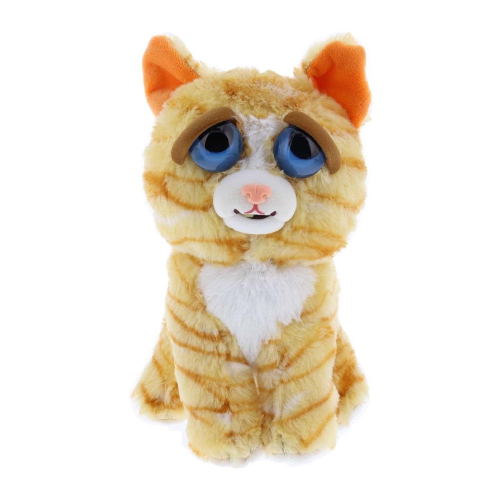 feisty pets princess pottymouth orange cat doofus