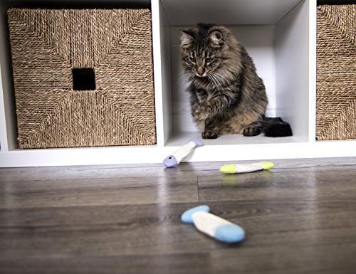 SmartyKat Fish Flop Cat Toy