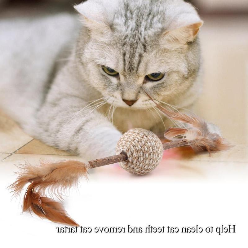 <font><b>Cats</b></font> Kitten <font><b>Chew</b></font> Catnip Matatabi Molar <font><b>Toy</b></font> <font><b>Cat</b></font> <font><b>Chew</b></font> Sticks Health Teeth And Pet