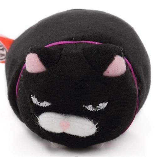 funny black cat purple collar