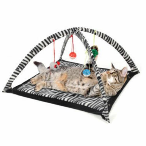 Funny Cat Play Tent With Toys Cat Kitten Mat