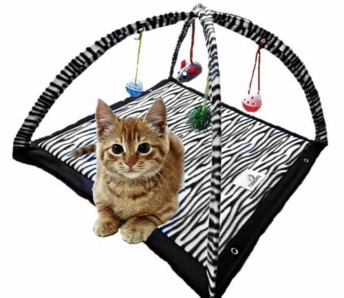 funny cat play tent with hanging ball