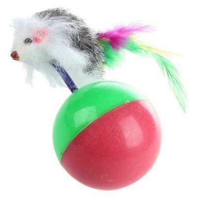 Funny Kids Cat Training Toy Mice Ball
