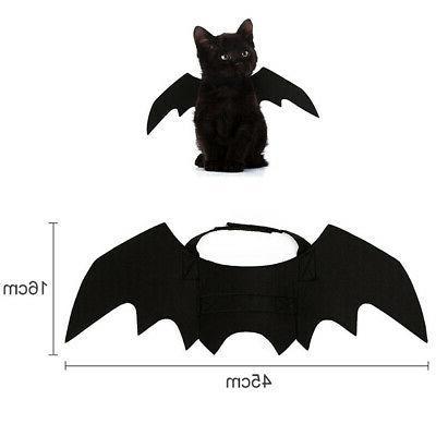Halloween Fancy Cat Kitty Bat Cool Design