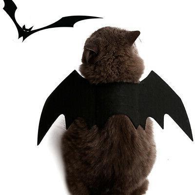 Halloween Fancy Cat Design