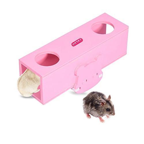 hamster seesaw tunnel