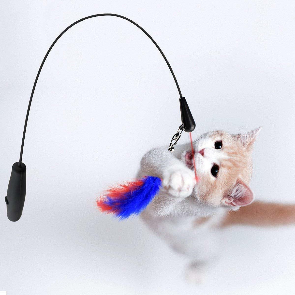 Interactive Cats Cats