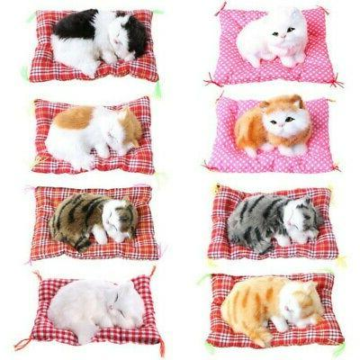 Kids Cat Toys Plush