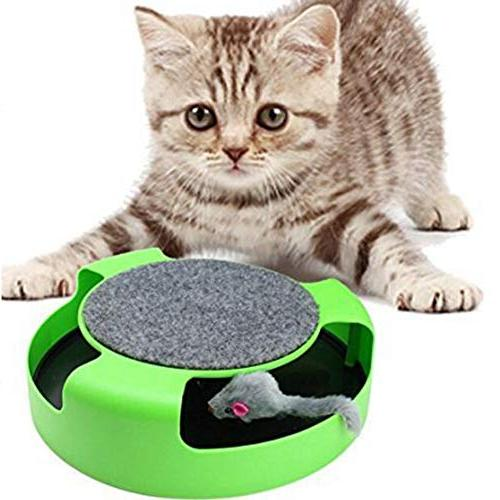 kitten cat games toy