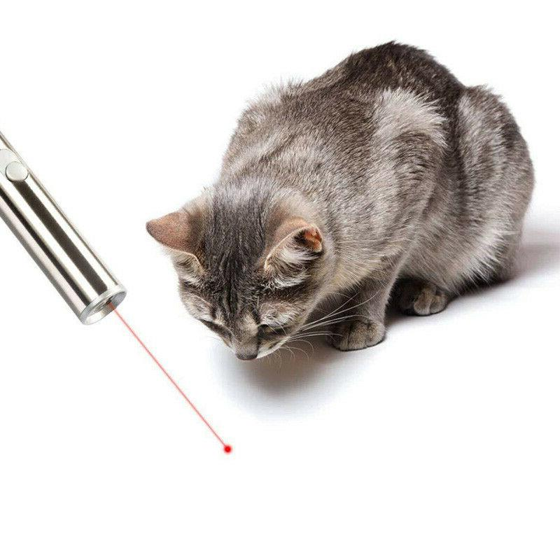 Laser Cat Stainless Cat Toy