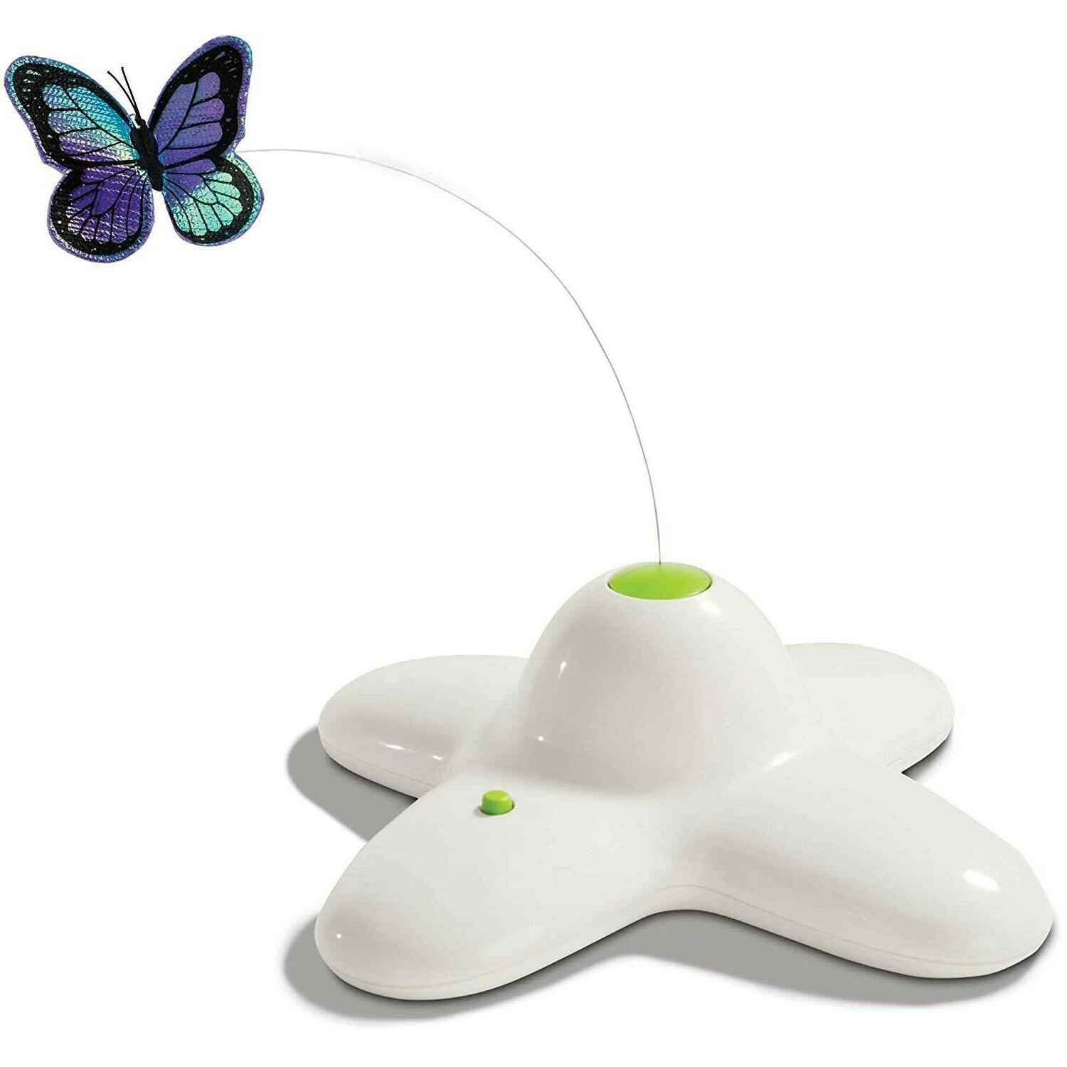 Leaps & Electric Flutter Butterfly