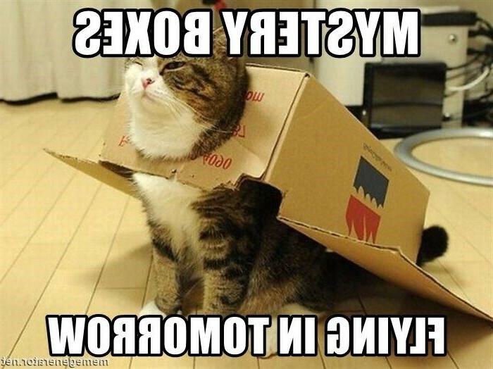 mysteries cat grab bag treats toys foods