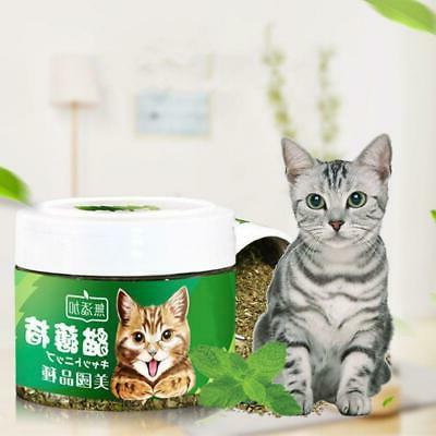 Natural Natural Mint Kitten Health Supplies
