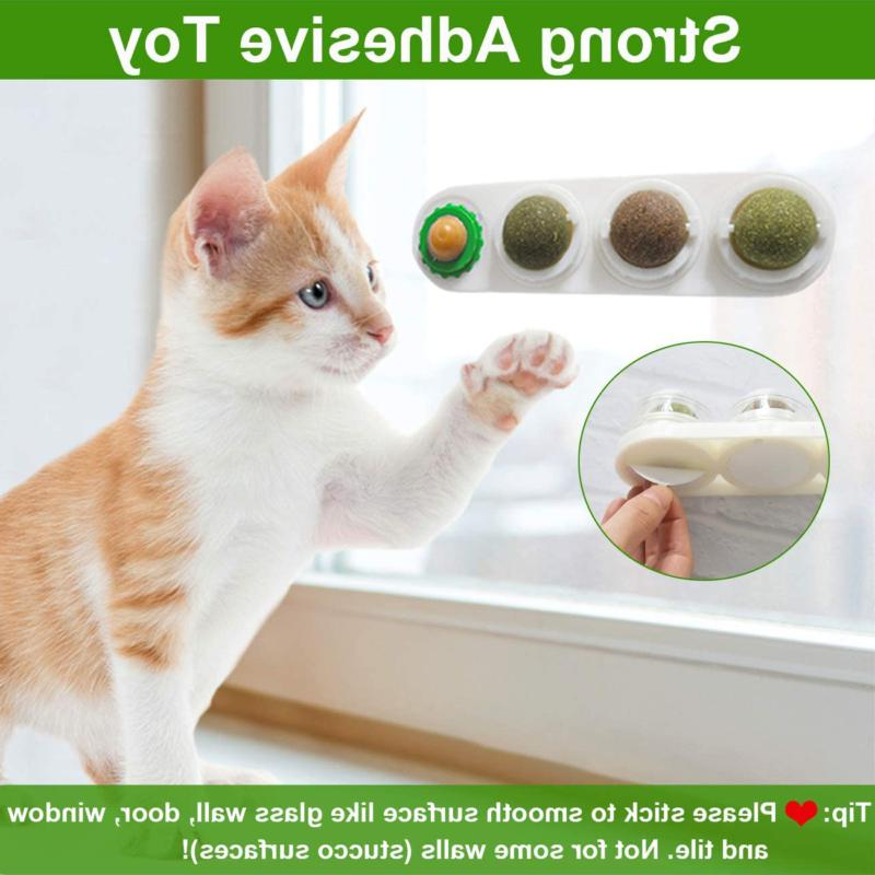 Natural Cats Balls Licking Malier Catnip Toy Edible