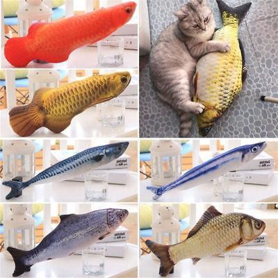 new pet kitten cat fish shape mint
