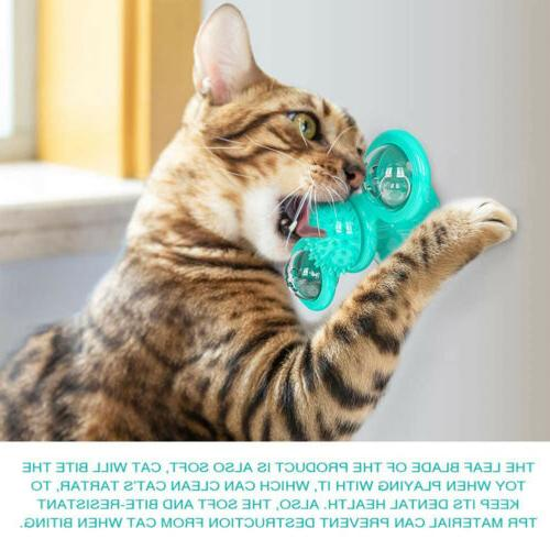 New Fidget for with LED Catnip Ball